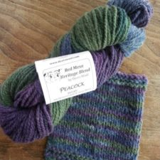 Variegated yarn in cool colors with swatch showing fast changing colors.