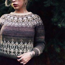 Colorwork sweater with bird skull motif in yoke.